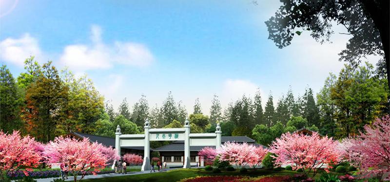 息县森林公园4.png